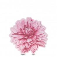 Sfumature di Dalia Parfumovaný kvet